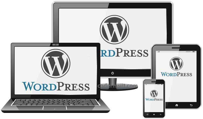 wordpress-theme-development-codermsiit